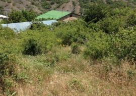 Продам Земельный участок в с. Изобильное (р-н Красный рай ) - Крым Недвижимость  в Алуште   цены  земельный участок